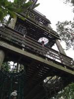 Herausforderung am Turm des Kletterparks